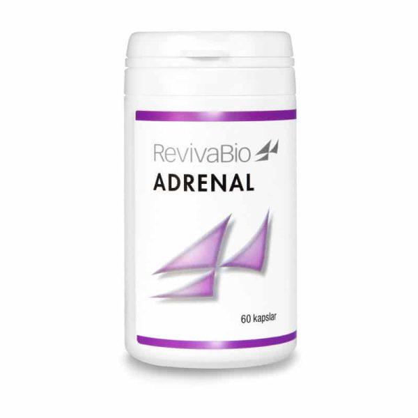 Adrenal för binjurarna vid utmattning och binjuretrötthet
