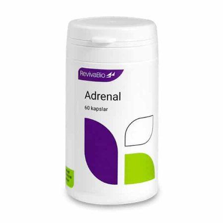 Adrenal-1609-600x600