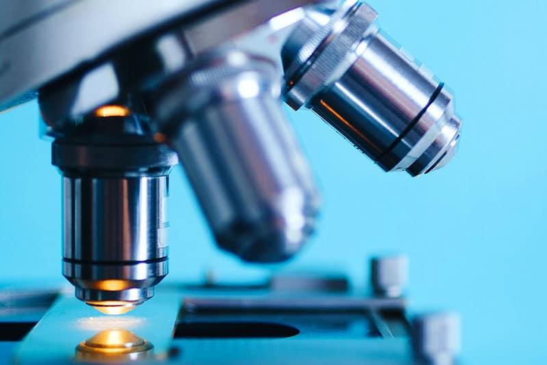DAO enzymet hjälper tarmen att läka visar ny forskning